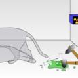 20110202_schrodingers_cat_svg