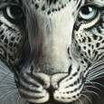 20110407_leopard